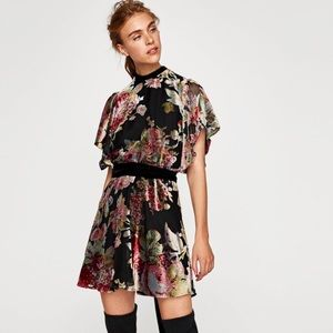 Zara Devore Velvet Mini dress Sz XS